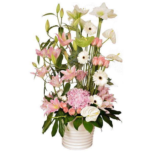 Livraison de fleurs diva mafleur ma maroc for Livraison de fleurs demain