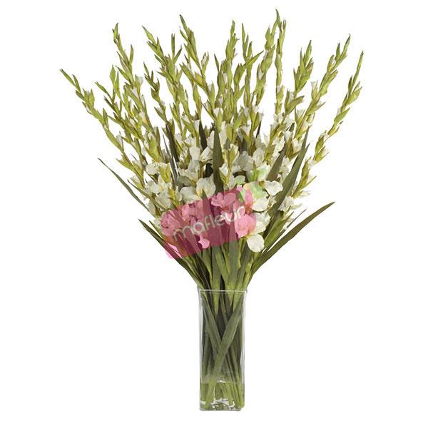 Livraison de fleurs blanc pr cieux mafleur ma maroc for Livraison fleurs etranger