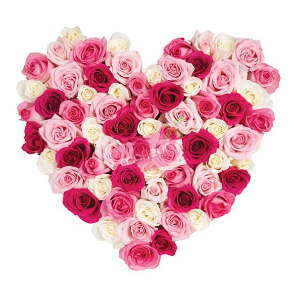 Livraison de fleurs coeur roses trois couleurs mafleur ma maroc - Coeur en fleurs naturelles ...