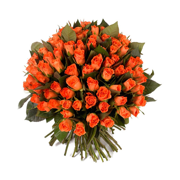 Livraison de fleurs extraits de roses mafleur ma maroc for Livraison de fleurs demain