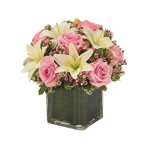 Livraison de fleurs jour d 39 automne mafleur ma maroc for Livraison de fleurs demain