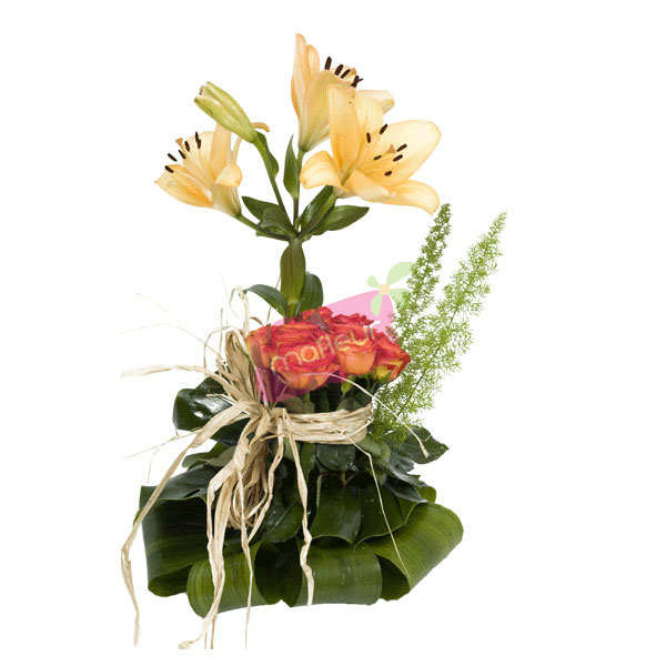 Livraison de fleurs envol mafleur ma maroc for Livraison fleurs etranger