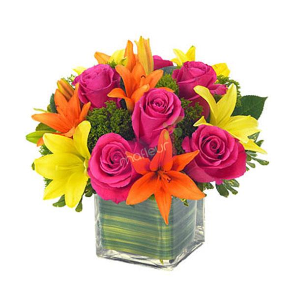 Livraison de fleurs c est un merveillement mafleur ma for Livraison de fleurs demain