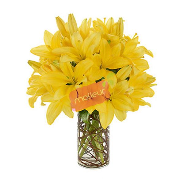Livraison de fleurs fleurs de lumi res mafleur ma maroc for Livraison fleurs etranger